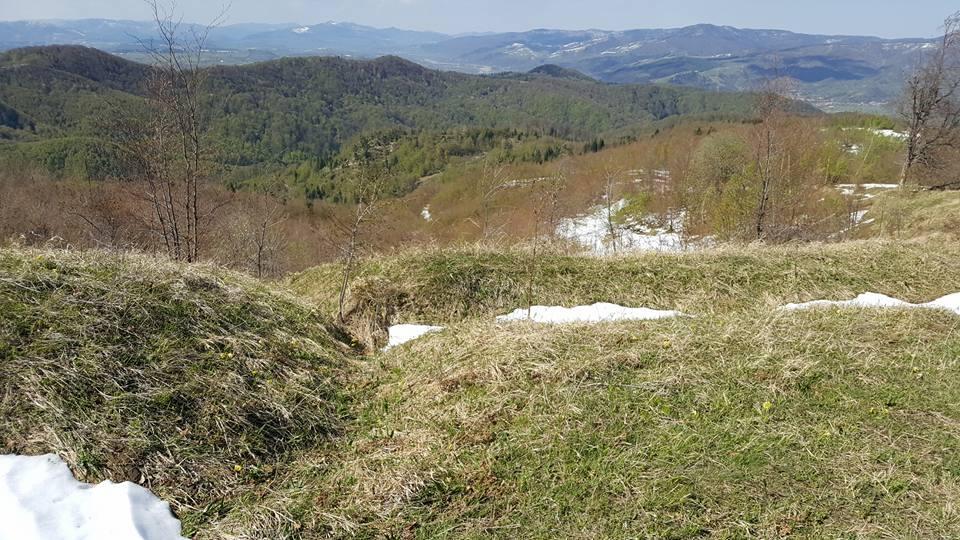 Tranşee pe dealul Cireşoaia